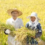 shutterstock 175873031 150x150 - 農業の後継者不足について 農業参入のすすめ