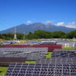 shutterstock 86008270 150x150 - 太陽光発電の現状と今後について